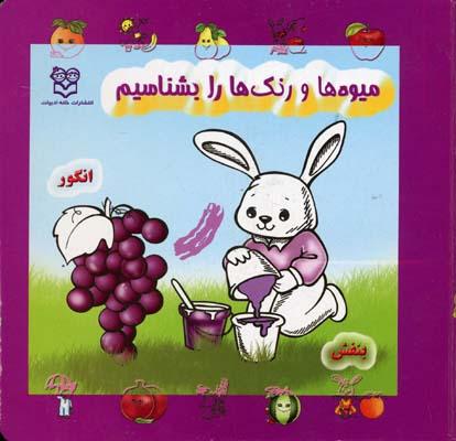 میوه ها و رنگها را بشناسیم